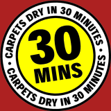 Carpets Dry in 30 Minutes
